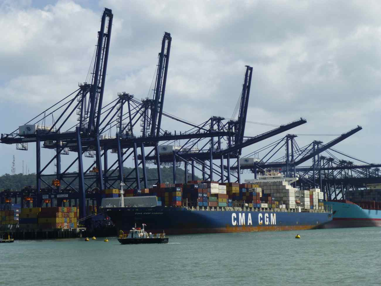 Some of the hundreds of cranes at the Port